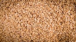 Seeds, seeds, seeds!