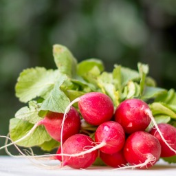 Recipe:  Roasted Radishes